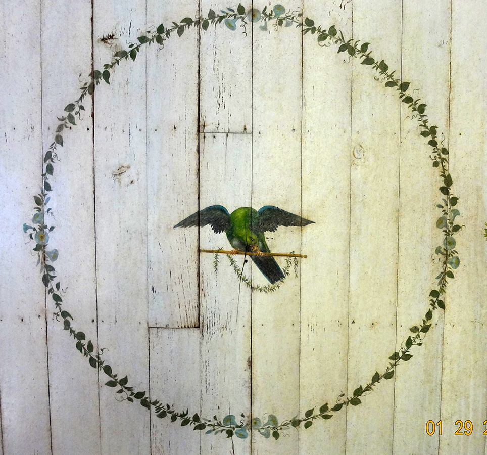 Detail of the painted parrot on the ceiling