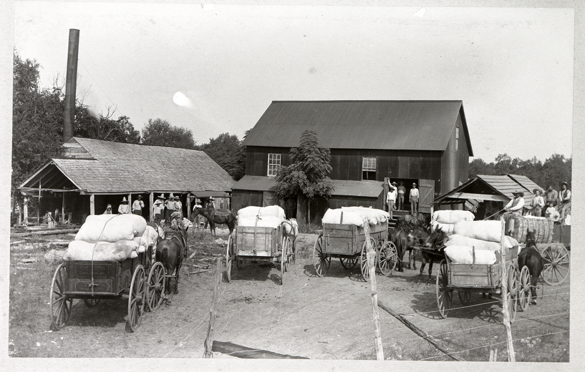 Collodion print of cotton wagons and barn, ca. 1900. Louis Melcher Photograph Collection. di_01143